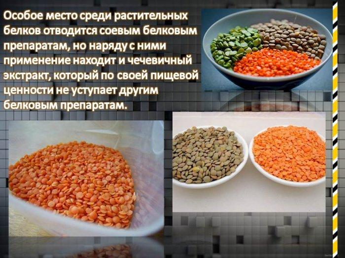 Презентация Производство Хлеба