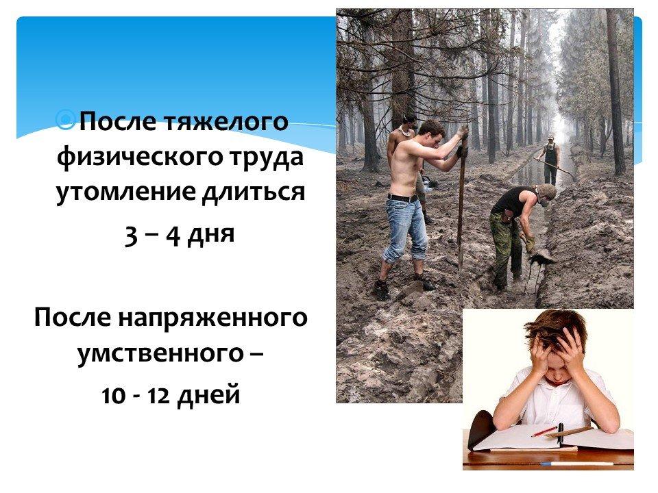 физическая культура в формировании здорового образа жизни