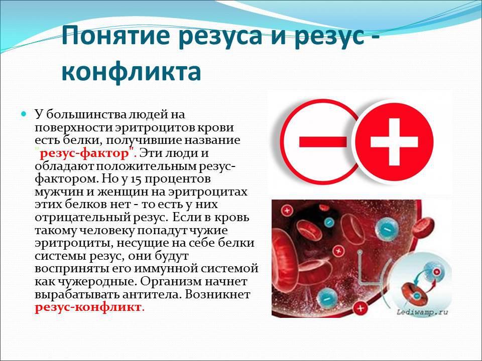 Антитела в крови у беременных с отрицательным резусом 3